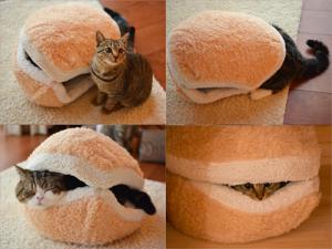 cat-burger